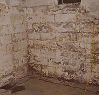 Peeling, Chipping, Basement Wall Coatings in Rosedale